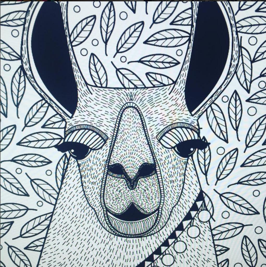 caroline-alfreds-line-drawing-llama